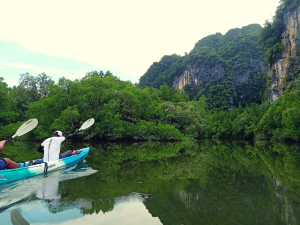 Krabi Kayaking Tour at Ban Bar Thor