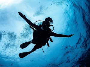 Try Scuba Diving at Koh Tao